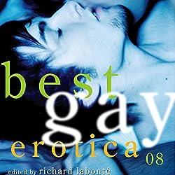 Best Gay Erotica 2008