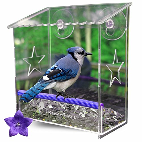 Window Bird Feeder with Strong Suction Cups – Our Acrylic Birdhouse is Clear and See Through, Securely Mounted and Squirrel Resistant. Easy to Install with Drainage Holes & Beautiful Packaging For Sale