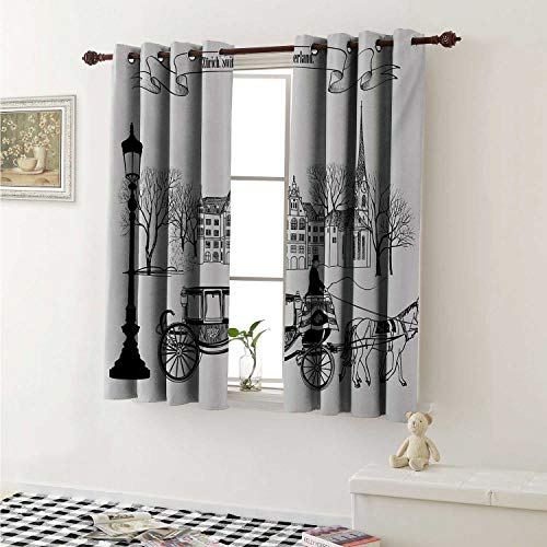 shenglv Sketchy Waterproof Window Curtain Old Street Scene Carriage Horse from Twenties Historical Northern Europe Theme Curtains Living Room W55 x L45 Inch Black White