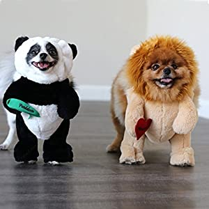 Pandaloon Panda Puppy Dog and Pet Costume Set - AS SEEN ON SHARK TANK - Walking Teddy Bear with Arms (Size 3 (17-19.5 in total height), Panda)