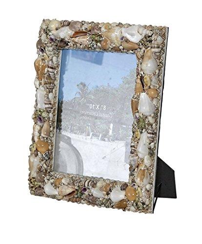 Assorted Shells Photo Frame 4x6