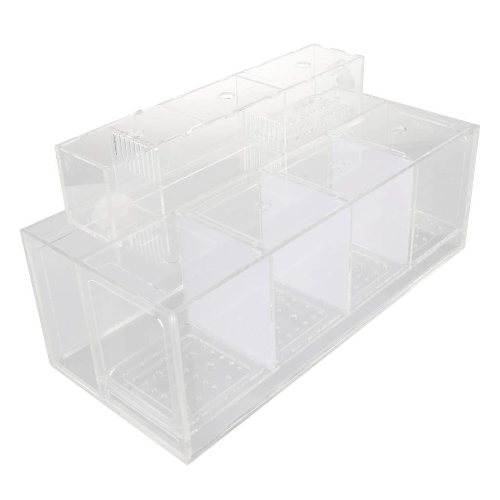 Flameer Acrylic Acclimation Box Fish Breeder Nursery Isolation Tank Fish Accessory - 4 Grid