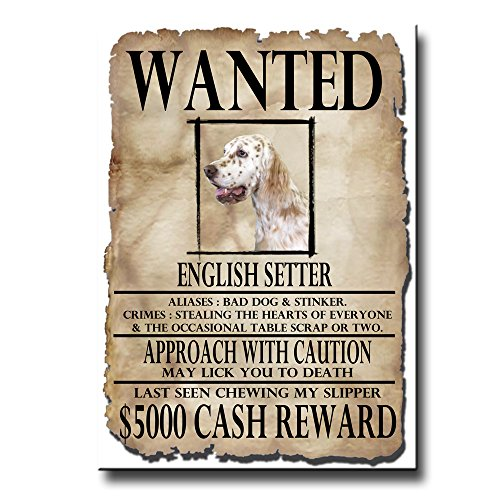 English Setter Wanted Poster Fridge Magnet No 1 English Setter Magnet