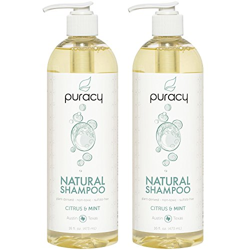 Puracy Natural Daily Shampoo (2-Pack), 3rd Generation Sulfate-Free Formula, All Hair Types, 16 Ounce