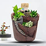 KINGSO Micro Landscape Ornament Plant Pot Planter Miniature Dollhouse for Fairy House Succulent Plant DIY Home Garden Decor 3.9''x4.7''