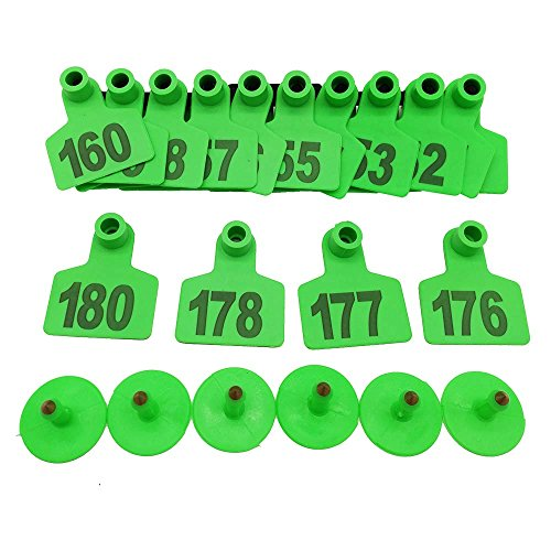001-1000 Ear Tags Animal Identification Tags Livestock Cattle Sheep Pig Ear Mark (Green)