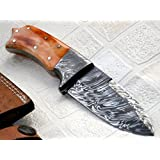 BC-219-40- Custom Handmade Damascus Steel Knife - Colored Bone Handle