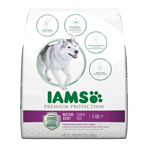 iams-premium-protection-mature-adult-dry-dog-food-11-pounds