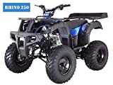 BRAND New Adult Size 250 ATV with standard manual clutch and BIG TIRES with REVERSE (Blue)