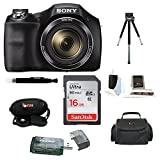 Best Compact Digital Camera For Action Shots - Sony Cyber-shot DSC-H300 Digital Camera (Black) with 16GB Review