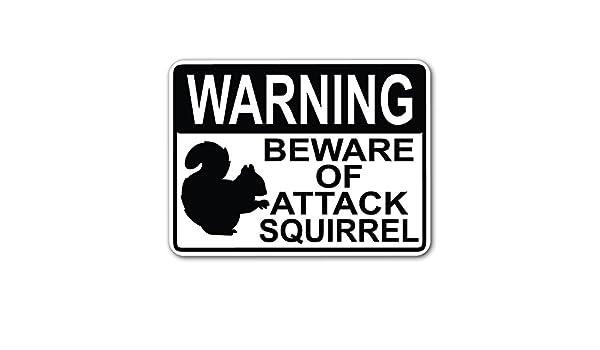 Advertencia cuidado con ataque de ardilla (negro) 9 x 12 cm ...