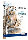 Brusho. . . And Beyond with Alison C. Board DVD