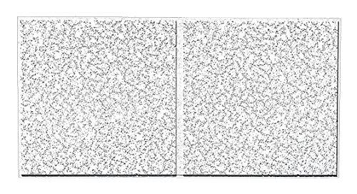 Cortega 9/16 Sec Look li 48''X24'' Thickness 3/4'', PK10 by Armstrong