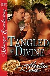 Tangled in Divine [Divine Creek Ranch 14] (Siren Publishing Menage Everlasting ) (The Divine Creek Ranch)