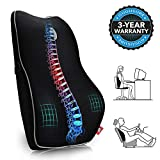 Memory Foam Lumbar Support Pillow, Gugusure Breathable Mesh Back Cushion with Ergonomic Designed for low Back Pain Relief, Orthopedic Backrest for Car Seat, Office Chair, Wheelchair and Recliner