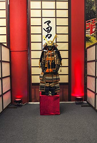 Framed Art for Your Wall Helmet Armor Japan Warrior Samurai Fighter Vivid Imagery 10 x 13 - Samurai Warrior Helmet