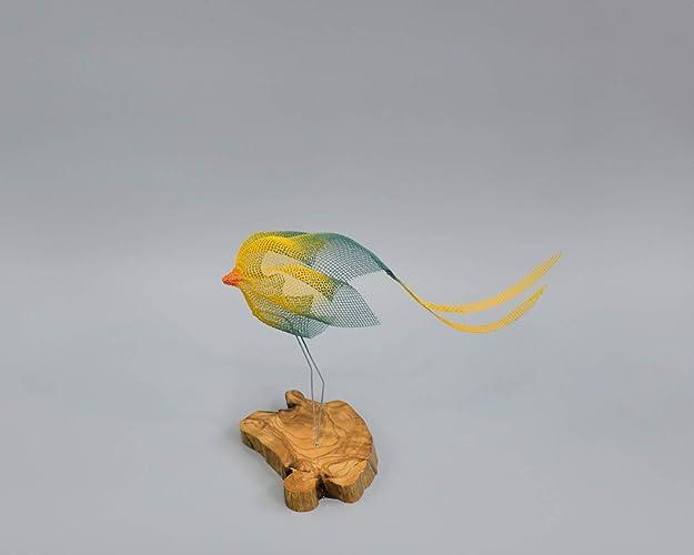 Amazon Bird Decor