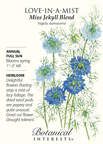 Miss Jekyll Blend Love-in-a-Mist Seeds - 1 g - Nigella