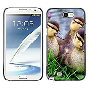 Hot Style Cell Phone PC Hard Case Cover // M00100596 duck animals // Samsung Galaxy Note 2 II N7100