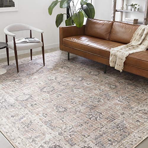 - Loloi ll SKY-01 Skye Collection Classic Traditional Area Rug, 5'-0