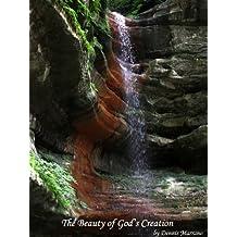 The Beauty of God's Creation