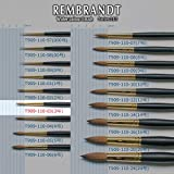 Rembrandt watercolor brush 110 Series # 03