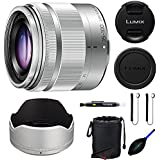 Panasonic 35-100mm f/4-5.6 Interchangeable Zoom Lens (Silver) (White Box) + Pixi-Essentials Accessories Kit