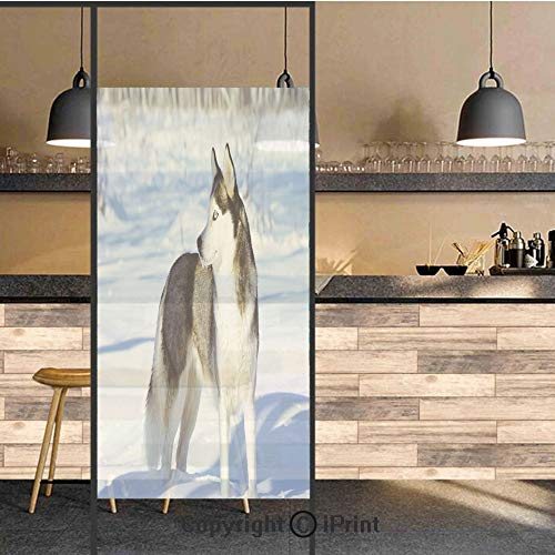 3D Decorative Privacy Window Films,Chukchi Husky Breed Dog on Snow Covered Rural Winter Landscape Decorative,No-Glue Self Static Cling Glass Film for Home Bedroom Bathroom Kitchen Office 17.5x71 Inch