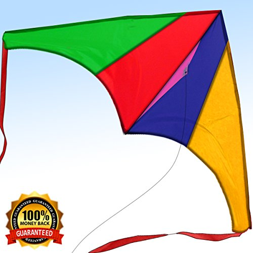 [2018 Limited Edition] Easy Flyer Kite for Kids & Adults – Newest Model, Full Kit with Handle & String – Today Get 100% Warranty – Have Fun and Build Priceless Memories – Limited Supplies