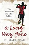 Front cover for the book A Long Way Gone: The True Story of a Child Soldier by Ishmael Beah