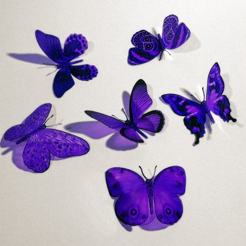 Butterfly 3d purple butterflies translucent decoration 15 for Butterflies for crafts and decoration