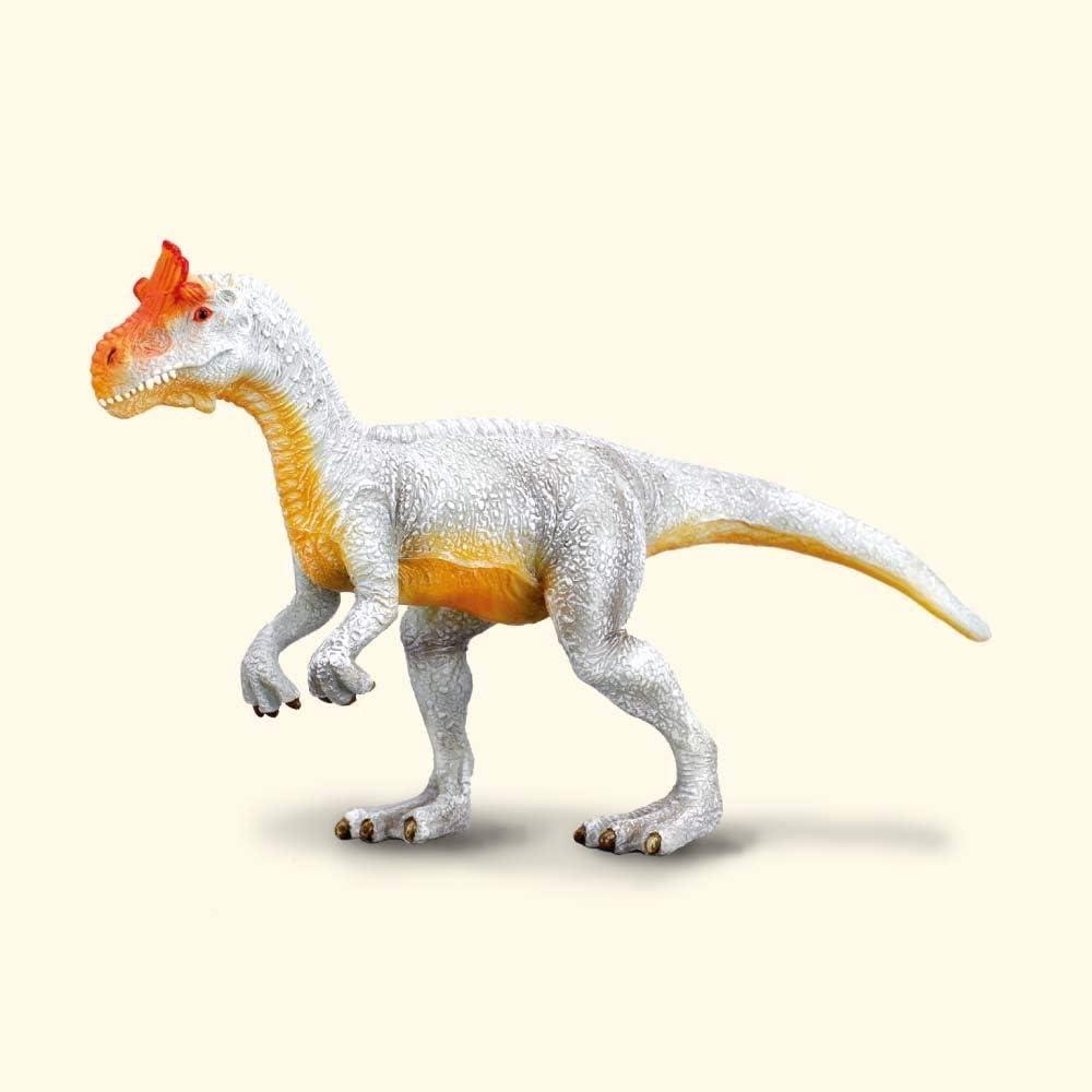 10 Best Jurassic World images   Dinosaur pictures, Jurassic world ...   1000x1000