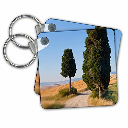 kc-227671-danita-delimont-italy-winding-road-val-d-orica-tuscany-italy-key-chains