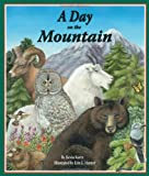 A Day on the Mountain, Kevin Kurtz, 1607180731