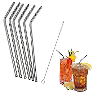 SySrion® Stainless Steel Straws Set of 6, Free Cleaning Brush Included
