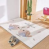 Tableware fruit plate Nordic Doormat Porch Silk Ring Floor mat can be Tailored for Home Doorway Cartoons, 120 200 cm [tailorable], Birds Falling in Love can Tailor Silk Hoop Mattress