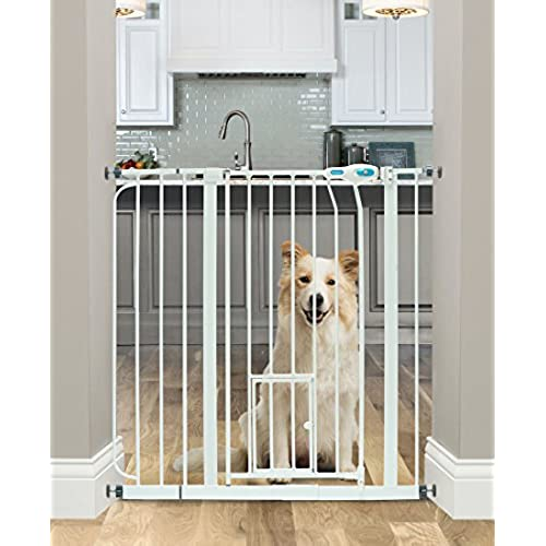 Dog Gates For House Amazon