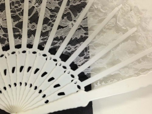 Lace and Plastic Hand Fans, set of 2