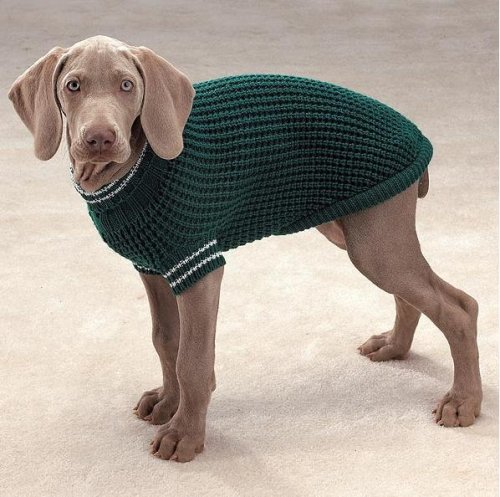 Dog Sweater Emerald Shaker Knit Dog Turtleneck Sweater Green X-Small by Casual Canine