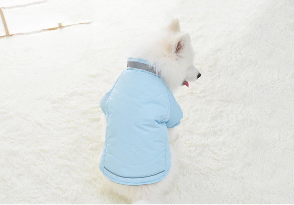 Chaqueta Abrigo Lana de Mascotas Forrada Prenda de Ropa para Perros (MARRON, S): Amazon.es: Hogar