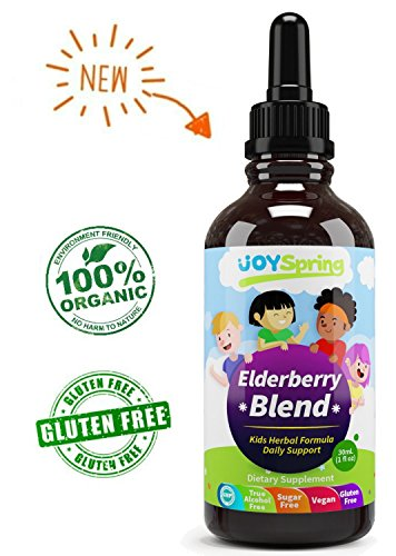 Organic Elderberry Syrup Kids Sugar Free product image