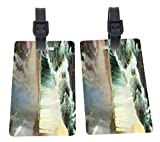 Frederick Edwin Church Art Niagara Falls Design Plastic Flexi Luggage Identifier Tags + Strap Closure