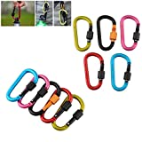 10 Pack Aluminum Alloy Locking Carabiner Clip - D Ring Keychain Hook for Home, RV, Camping, Fishing, Hiking, Traveling, Backpack