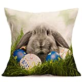Arts & Crafts : Usstore 1PC Decorative Pillowcases zip Square Easter Cartoon Throw Pillow Cover Cafe Home Decoration for Living Sofas Beds Room (C)