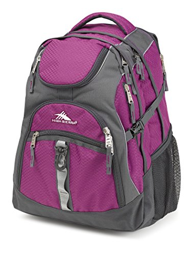 High Sierra Access Backpack, Berry Blast/Mercury