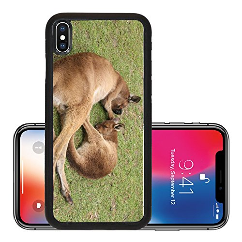 Liili Premium Apple iPhone X Aluminum Backplate Bumper Snap Case ID: 28979989 Sleeping mother and her joey Ballarat Wildlife Park Victoria - Ballarat Store
