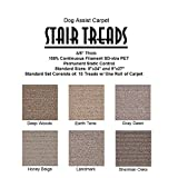 9''x27'' Dog Assist Carpet Stair Treads - SIENNA - Set of 13 w/ 1 Roll Carpet Tape (Sherman Oaks)