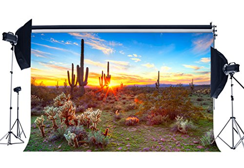 (Gladbuy Tropical Cactus Backdrop 7X5FT Vinyl Wild Desert Backdrops Nature Sunrise Green Plants Blue Sky White Cloud Egyptian Photography Background for Outdoor Tourism Photo Studio Props KX922)