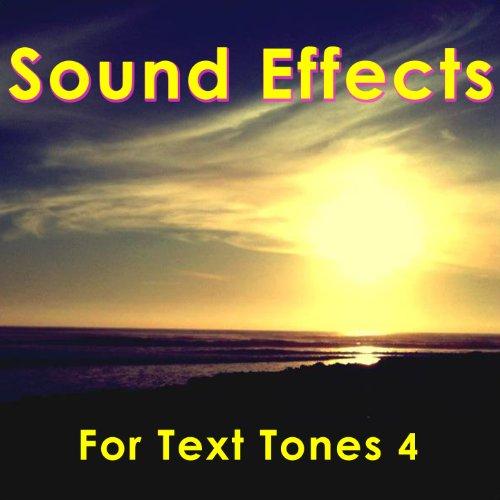 Text Single (Drum Circle Single Whistle (Text Tone))