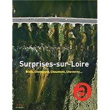 SURPRISES-SUR-LOIRE : BLOIS, CHAMBORD, CHAUMONT, CHEVERNY...